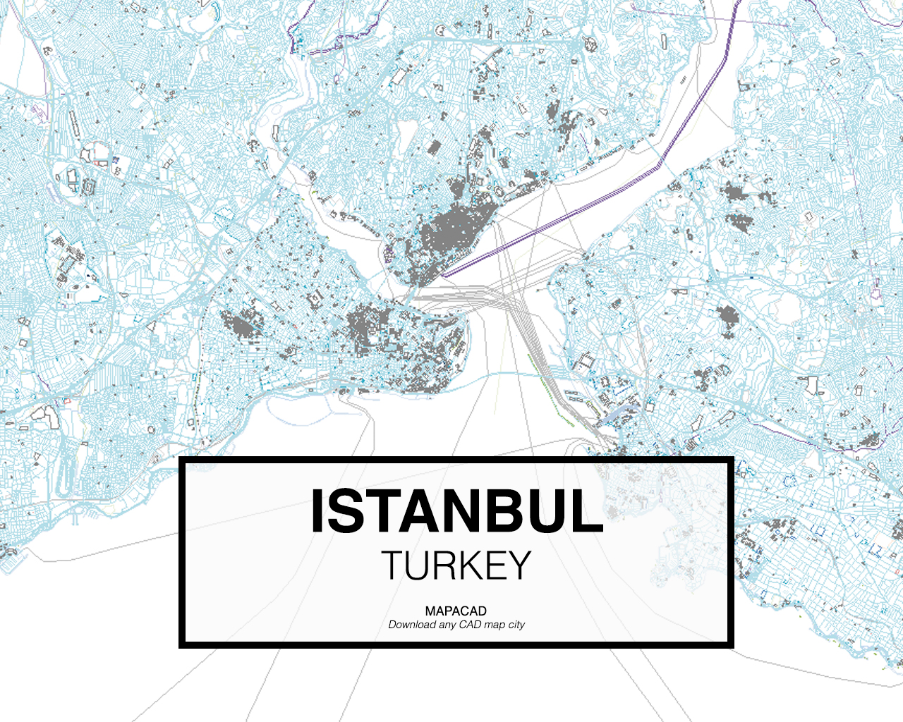Download Istanbul DWG - Mapacad on